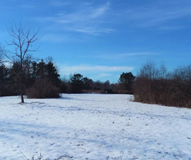 Lapeer County 10 acre hunting land